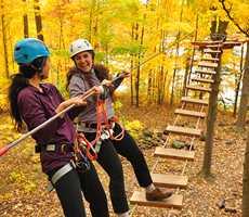 Parcours dans les arbres en automne à Arbraska