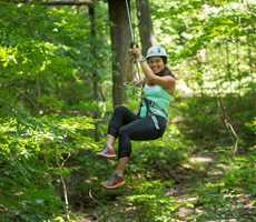 Treetop courses at Arbraska