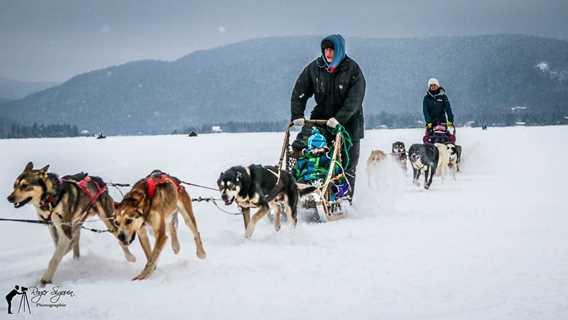 Homme faisant du traîneau à chiens à la Féérie d'hiver de Saint-Donat