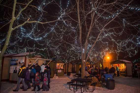 Arbres illuminés en soirée au Marché de Noël de Terrebonne