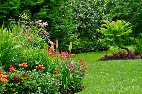 English garden at Maison Antoine-Lacombe