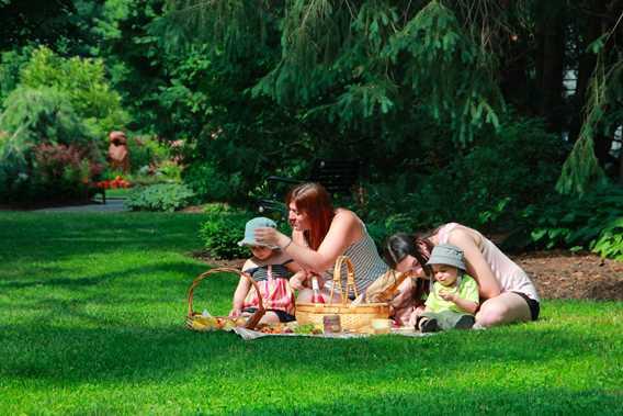 Pique-nique aux jardins de la Maison Antoine-Lacombe
