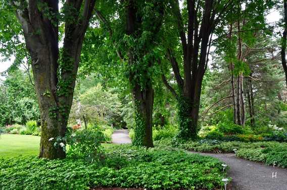 Entrée du jardin anglais à la Maison Antoine-Lacombe