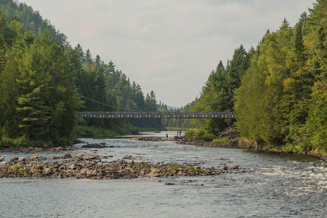 Pont suspendu Parc régional de la Forêt Ouareau