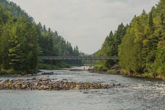Bridge Parc régional de la Forêt Ouareau