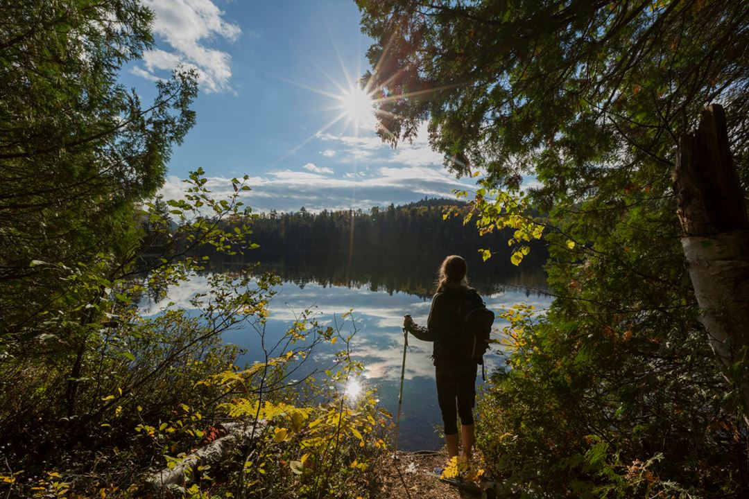 Randonnée Parc régional de la Forêt Ouareau