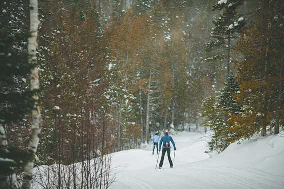 Ski de fond et raquette - Parc régional de la Forêt Ouareau