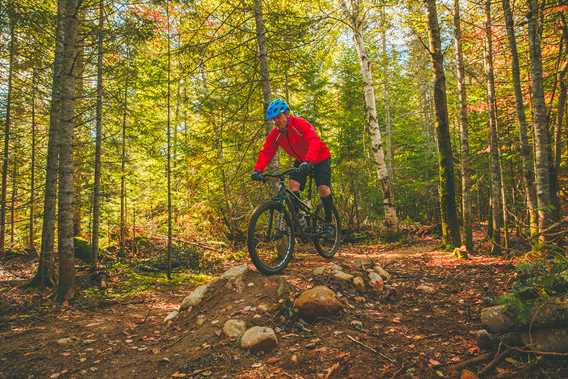 Mountain bike in Saint-Donat