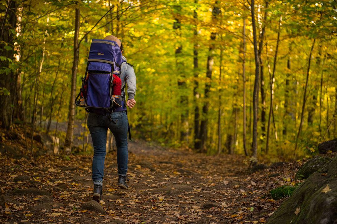 Le Mont-Sourire à Saint-Donat en automne