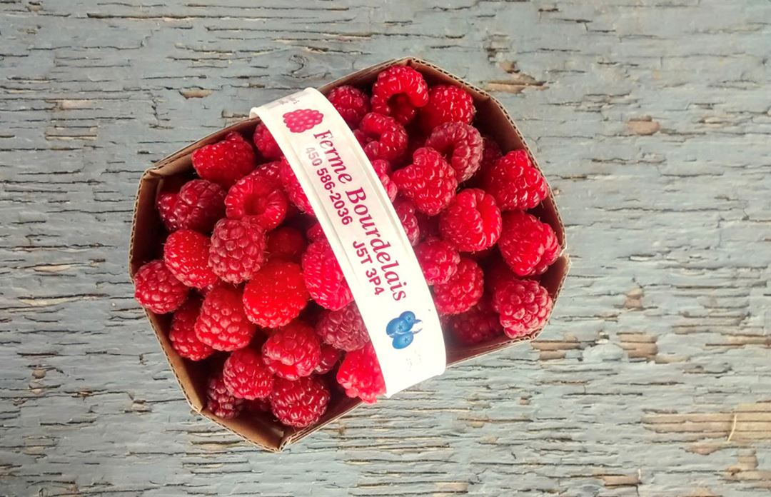 Ferme Bourdelais raspberries