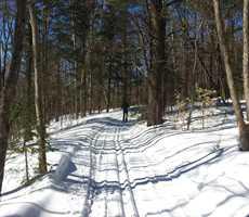 Cross-country-skiing-fatbike-in-sentiers-brandon