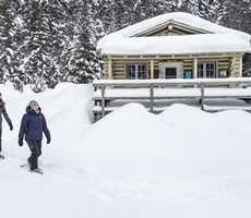 parc-du-mont-tremblant-pimbina-snowshoeing-cabin