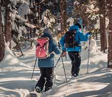 couple snowshoeing in Forêt Ouareau