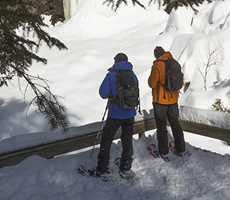 snowshoeing forêt ouareau