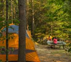 Camping in Forêt Ouareau