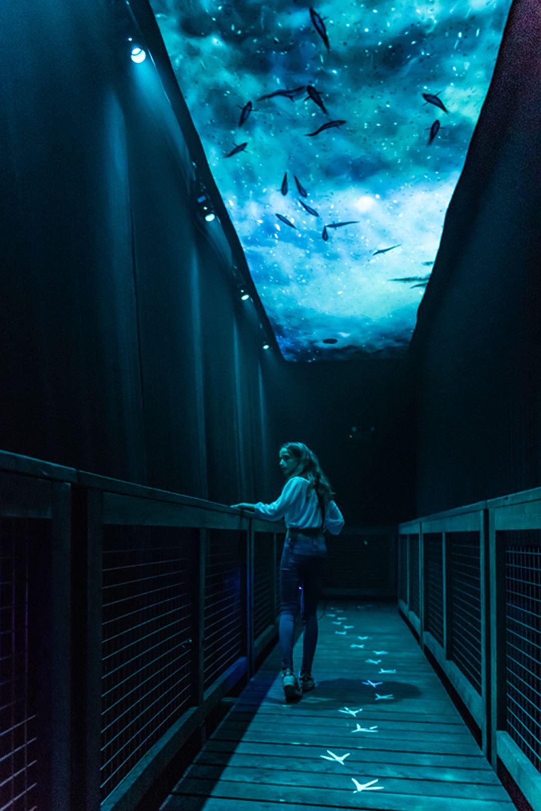The indoor interactive journey