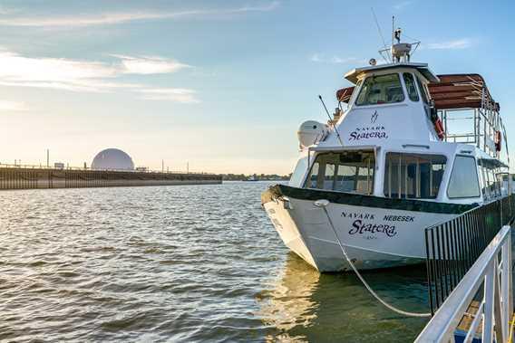 Cruise Statera