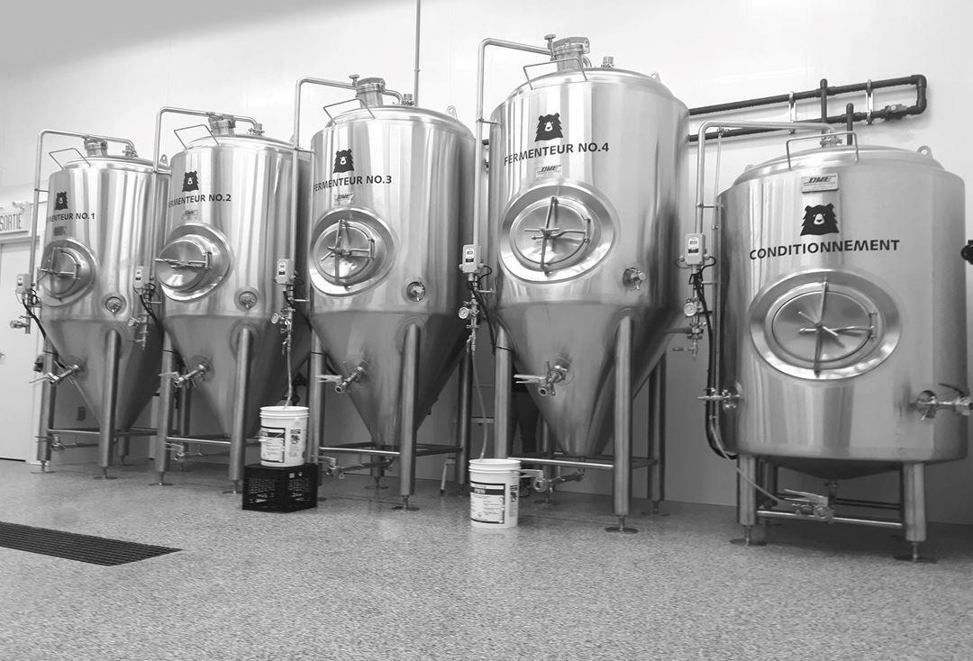 Microbrasserie l'Ours Brun fermenteurs de bières