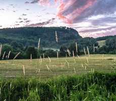 Magasin de l'Abbaye Val Notre-Dame - Pique-nique forestier