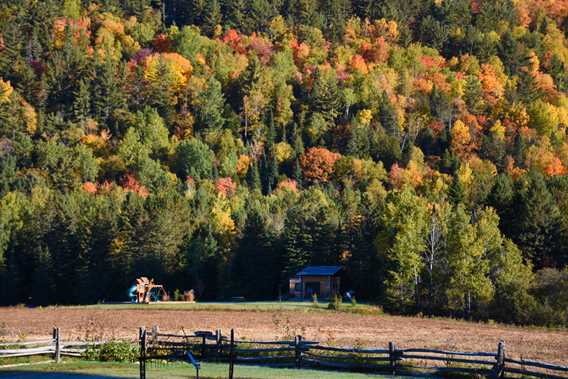 golle-goulu-camping-refuges-automne