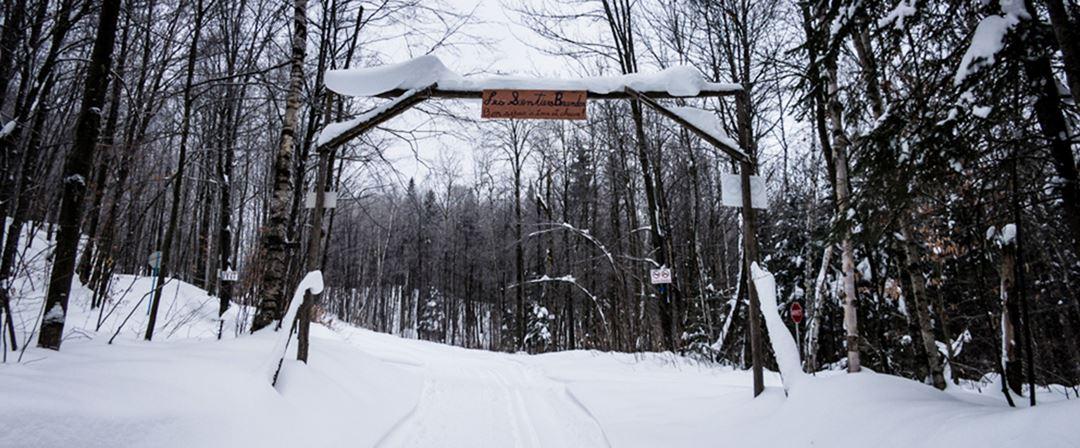 Sentiers de randonnée pédestre en hiver aux Sentiers Brandon