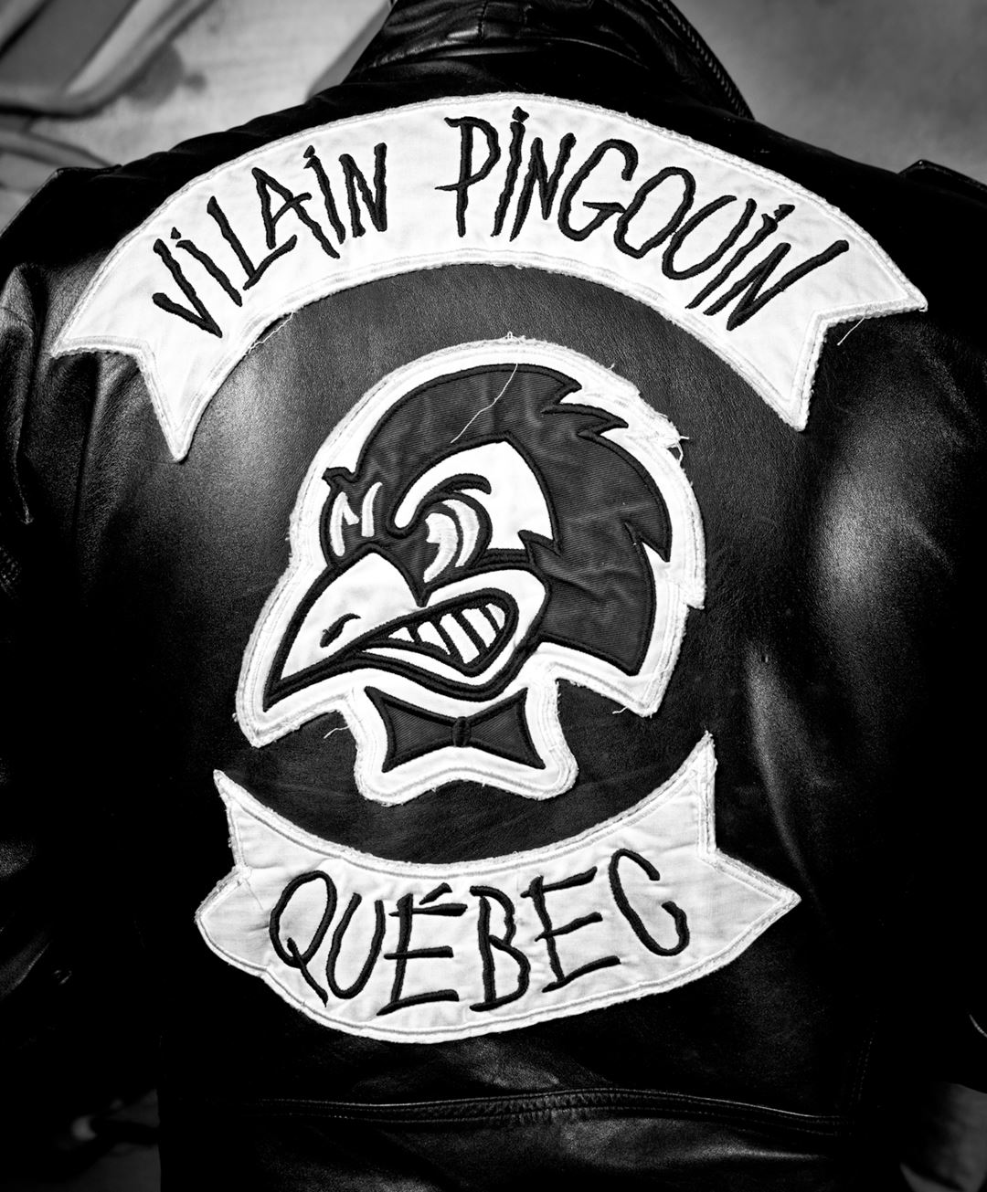 Villain Pingouin