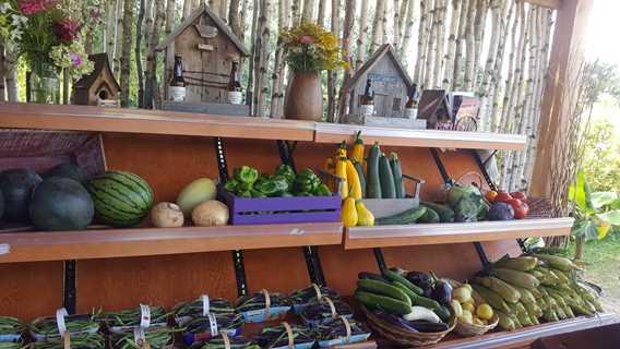 Étalage de légumes de Les P'tits fruits de Marie