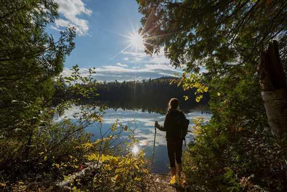 Hiking in Parc régional de la Forêt Ouareau