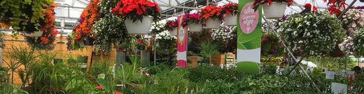 Greenhouses of Les Jardins Gourmands