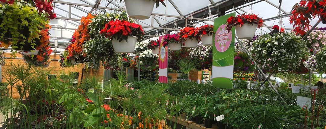 Serres intérieures des Jardins Gourmands