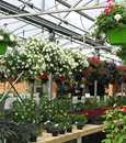 Les Jardins Gourmands