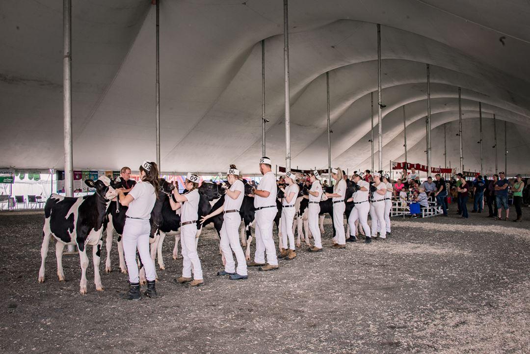 Exposition agricole régionale Rive-Nord