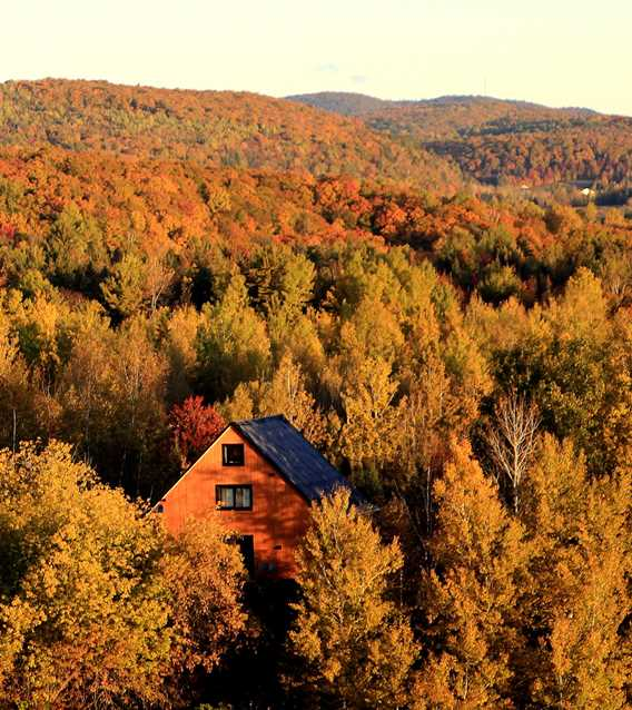 Chic Cottage in fall