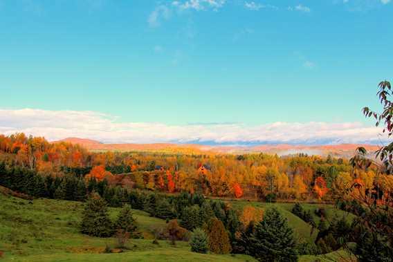 Autumn view at Chic Chalet des Chutes