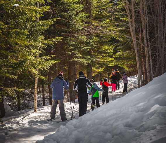Ski de fond au Centre de plein air l'Étincelle