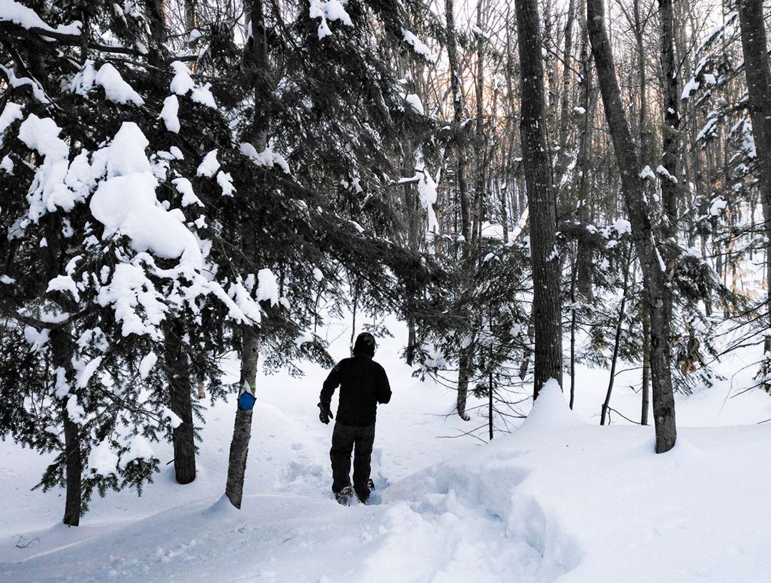 snowshoeing-les-pieds-sur-terre