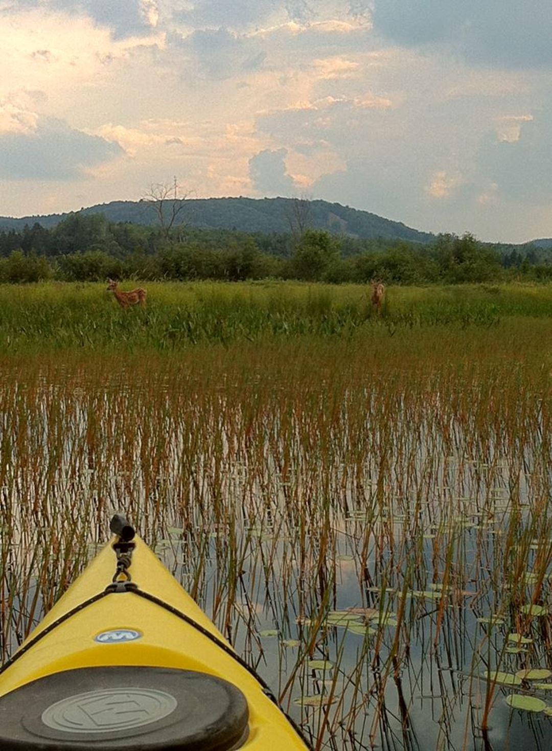 Parc des Cascades kayak