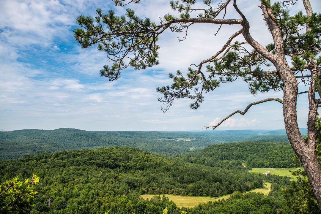 Auberge-montagne-coupee-belvedere-summer