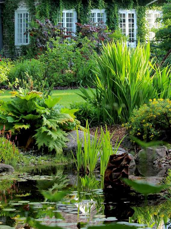 Pond and house at Maison Antoine-Lacombe