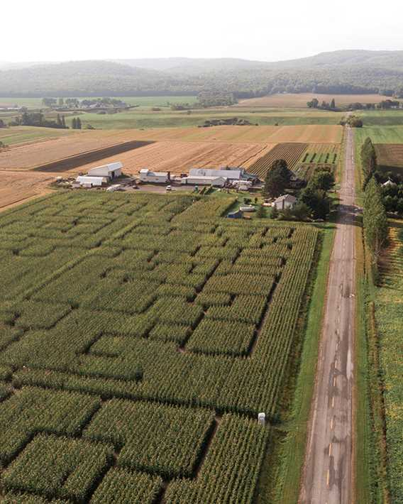 Le Grand Labyrinthe de Lanaudière Ferme Guy Rivest