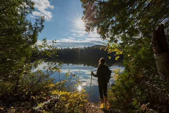 Hike Parc régional de la Forêt Ouareau