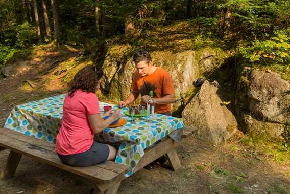 Picnic Parc régional de la Forêt Ouareau
