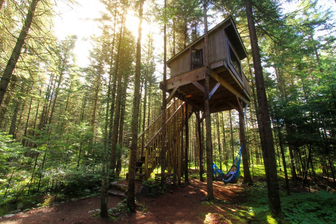 Kabania-cabins-in-the-trees