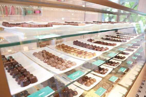 Display of fine chocolates at Chocolaterie
