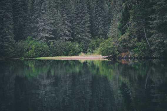 Les Sentiers du Lac en Coeur
