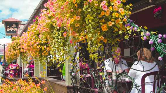 Terrasse du restaurant La Lanterne