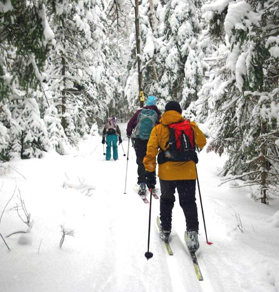 Group of people cross-country skiing in the woods of the path Saint-Donat