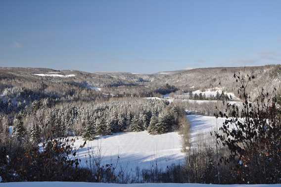 Ski Montagne coupée