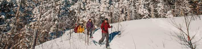 Take a winter hike in a park at Saint-Donat