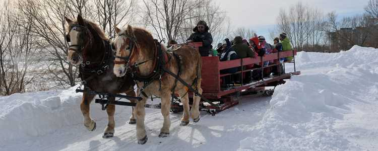 Horse carriage during winter at Repentigny